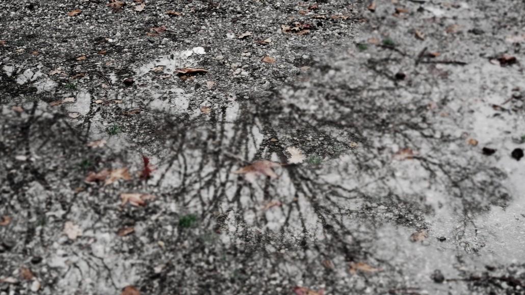 Autumn Leaves - Sonia Arekallio | Arenia.ch - Real Estate & Lifestyle in Geneva
