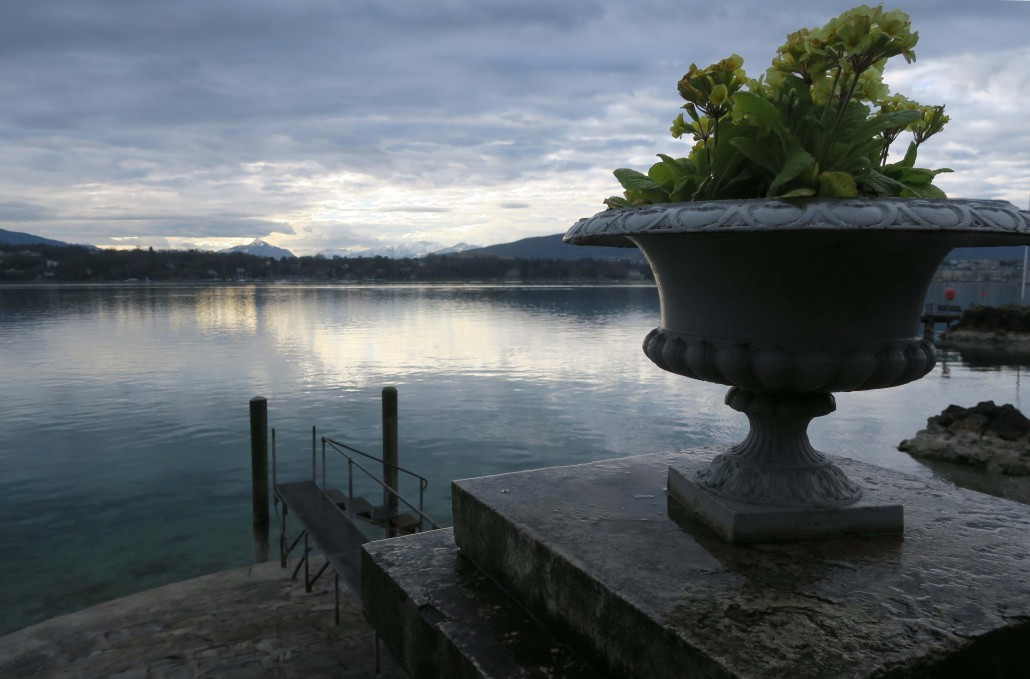 Geneva Heritage – The Botanical Garden – Marcello in Geneva - Sonia Arekallio | Arenia.ch - Real Estate & Lifestyle in Geneva